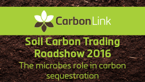 YouTube video. The microbes role in soil carbon sequestration