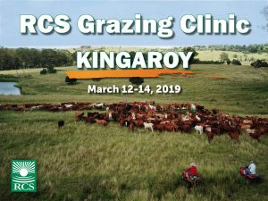 RCS Grazing Clinic - Kingaroy. 12-14 March 2019. People on motorbikes walking cattle.