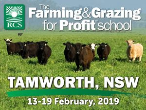Farming and grazing for profit school tamworth. Cattle in green green grass.