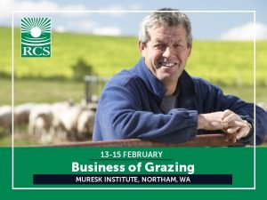 Business of Grazing. Man leaning on gate with sheep grazing in the background