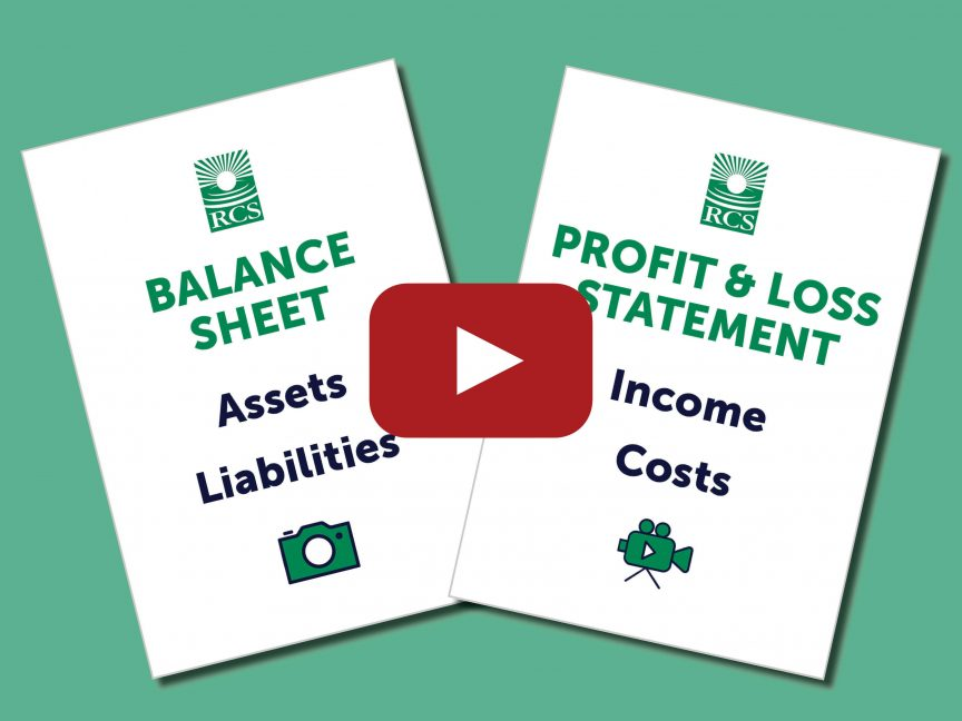 4 types of money on the balance sheet and P and L statement