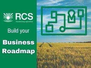 RCS Business Roadmap