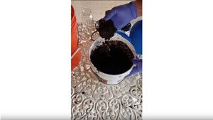 David Johnson Su compost slurry seed treatment
