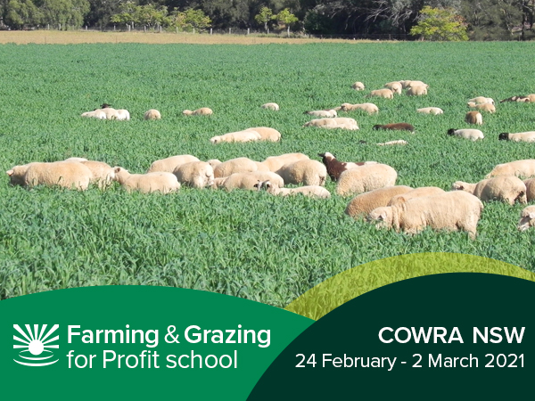 Cowra Farming & Grazing For Profit School