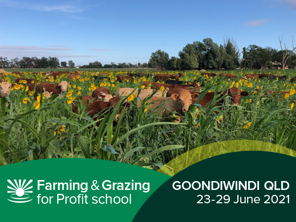 Goondiwindi Farming & Grazing For Profit School
