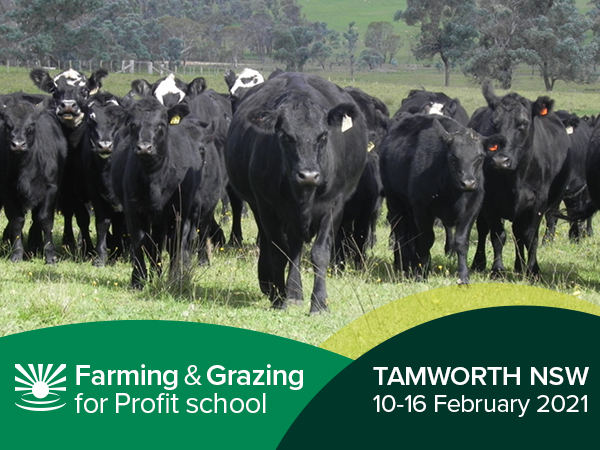 Tamworth Farming & Grazing For Profit School