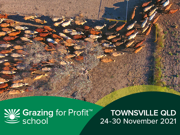 Townsville Grazing for Profit™ School