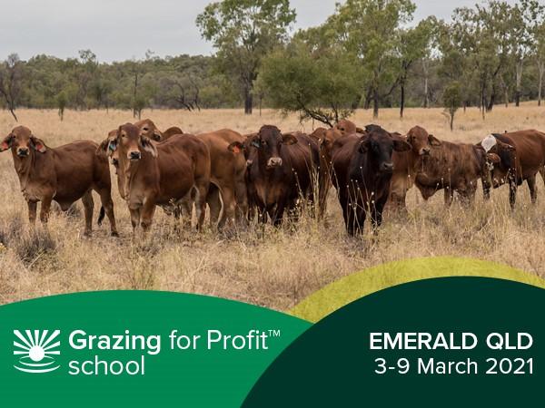 Emerald Grazing for Profit™ School