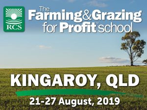The farming and grazing for profit school kingaroy. A lone tree in a wheat field.