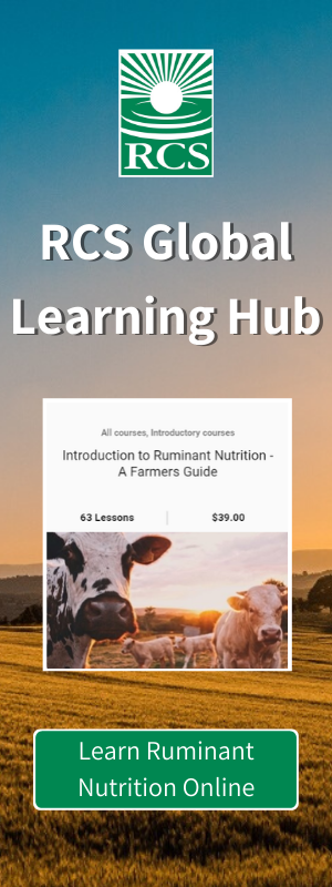 Learn Ruminant Nutrition Online via the RCS Global Learning Hub