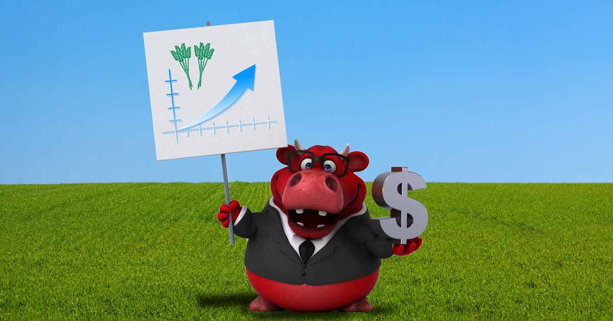 Production or profit? Cartoon bull holding a chart and dollar sign.