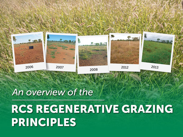 An overview of the RCS Regenerative Grazing Principles