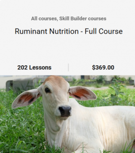 Ruminant Nutrition - Full Course