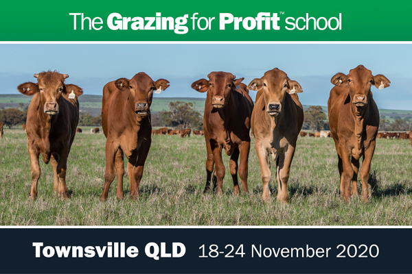 Townsville Farming and Grazing for Profit School