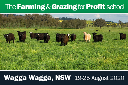 Wagga Wagga Farming and Grazing for Profit